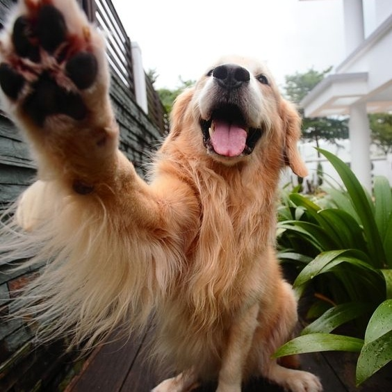 A Big High-Five next time we see you